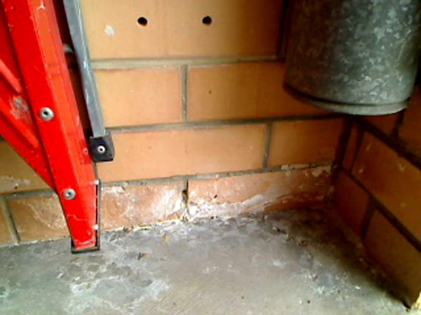 Salt Damp revealed in Building Inspection