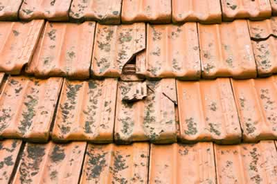 house inspection – obvious fault – broken tiles